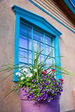 Flowers in Front of a Santa Fe Gallery Window Royalty Free Stock Photography
