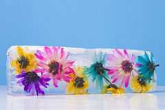 Flowers Frozen in Ice Block Stock Image