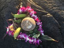 Flowers and fruit offering to God on lava plane in Hawaii Royalty Free Stock Photo