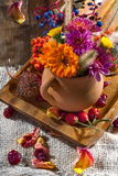 Flowers and fruits of autumn Royalty Free Stock Photography