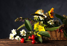 Flowers and fruits Royalty Free Stock Photo