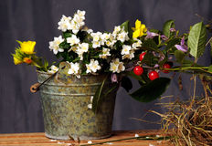 Flowers and fruits Royalty Free Stock Photography