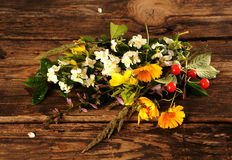 Flowers and fruits Stock Images