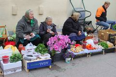 Elderly women sell Cosmos flowers and fruits at the Kalvariju market in the Old town of Vilnius, Lithuania Stock Image