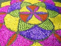 Flowers and fruits mandala Stock Photos