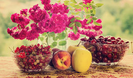 Flowers and fruits. Sill life with red tableware, flowers and fruits, over green background Royalty Free Stock Photography