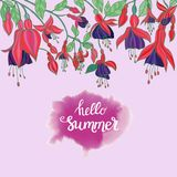 Flowers fuchsia on pink background and hello summer lettering Stock Photo