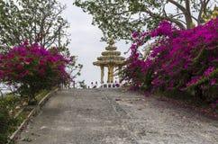 Khao Takiab, the chopstick mountain. Flowers in full bloom at Khao Takiab Hua Hin Thailand Royalty Free Stock Image