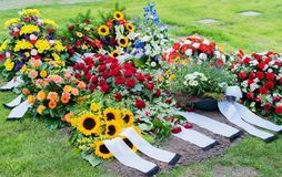 Flowers after a funeral in an old cemetery. In Germany stock photography