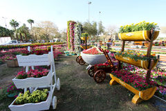 Flowers Gallery in Baghdad Stock Images