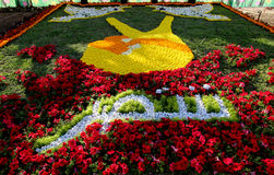 Flowers Gallery in Baghdad Royalty Free Stock Image