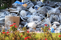 Flowers and Garbage in Lebanon Royalty Free Stock Photography