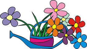 Flowers in the garden watering Stock Image