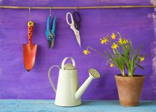 Flowers and gardening tools, Royalty Free Stock Images