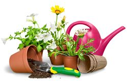 Gardening Equipment and flowers isolated on white. Flowers gardening uipment green background set isolated royalty free stock photo