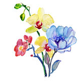 Flowers . Garland, Watercolor Royalty Free Stock Photo