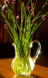 Flowers of garlic in vase on table Stock Photo