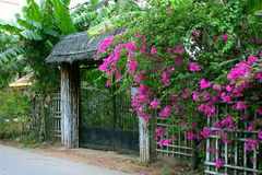 Flowers gate Stock Photo