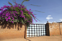 Flowers And Gate, Kenya Royalty Free Stock Images
