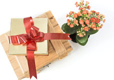 Flowers and gift box. Isolated on white background Stock Photos