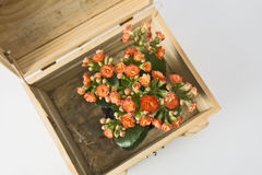 Flowers and gift box. Isolated on white background Stock Images