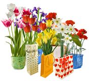 Flowers in gift packing Stock Photos