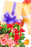 Flowers with gifts Royalty Free Stock Photo