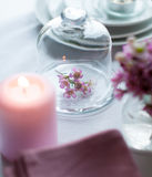 Flowers in a glass bell jar Stock Image