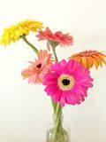 Flowers in a Glass Bottle Stock Photography