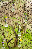 Flowers in glass bulbs on fence Royalty Free Stock Photos