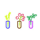 Flowers in glass flasks vector icons. Royalty Free Stock Photography