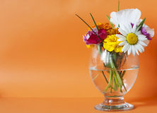 Flowers in a glass Royalty Free Stock Photography