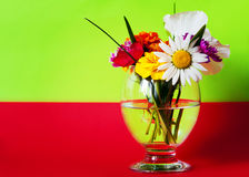 Flowers in a glass red green Stock Images
