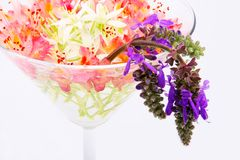 Flowers in a glass vase Stock Photography