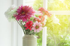 Flowers in glass vase Royalty Free Stock Photos