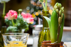 Flowers in glass vases on a coffee table Royalty Free Stock Images