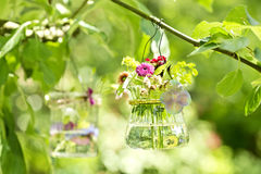 Flowers in a glass Royalty Free Stock Images