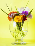 Flowers in a glass yellow Stock Image