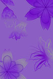 Flowers with gradient. Flowers with a color gradient in purple/grey Royalty Free Stock Images