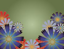 Flowers with gradient background. Illustrated  flowers on gradient background Stock Photography