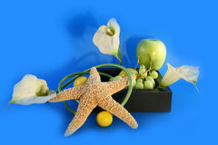 Flowers and grapes. Composition from fruit and flowers royalty free stock images