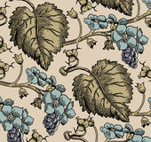 Flowers. Grapes. Beautiful background from leaves. Royalty Free Stock Images