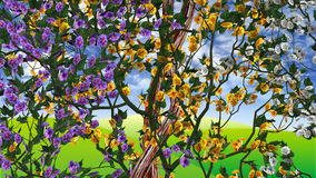 Flowers on grapevine Stock Photography