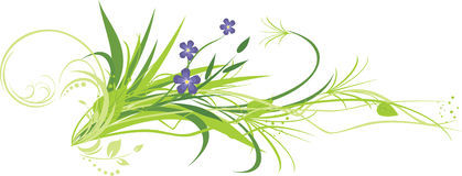 Flowers with grass Royalty Free Stock Photos