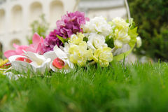 Flowers on Grass Stock Photography