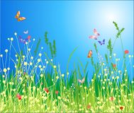Flowers, grass and butterfly stock illustration