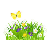 Flowers With Grass And Butterfly Royalty Free Stock Image