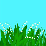 Flowers and grass Royalty Free Stock Photography