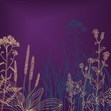 Flowers and grass at night. Vector illustration Royalty Free Stock Images