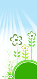 Flowers and grass. Vector illustration Royalty Free Stock Photography